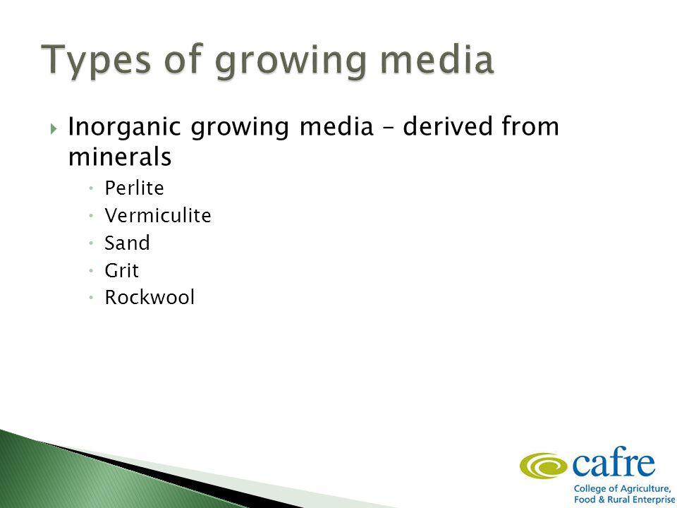  Inorganic growing media – derived from minerals  Perlite  Vermiculite  Sand  Grit  Rockwool