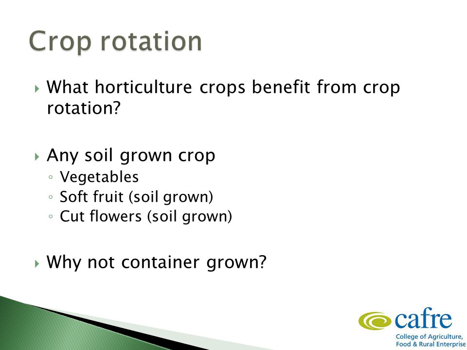  What horticulture crops benefit from crop rotation.