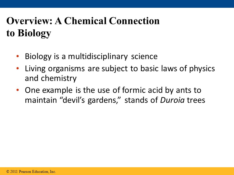 Overview: A Chemical Connection to Biology Biology is a multidisciplinary science Living organisms are subject to basic laws of physics and chemistry One example is the use of formic acid by ants to maintain devil's gardens, stands of Duroia trees © 2011 Pearson Education, Inc.