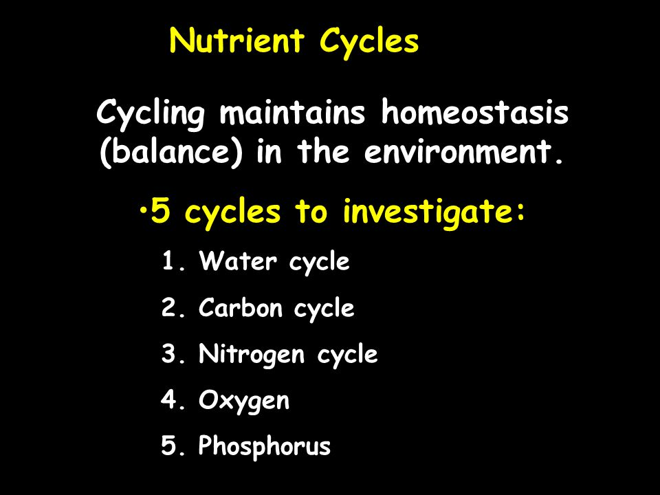 Water cycle- Includes the following Evaporation, transpiration, condensation, precipitation The hydrologic, or water, cycle is the circular pathway of water on Earth.