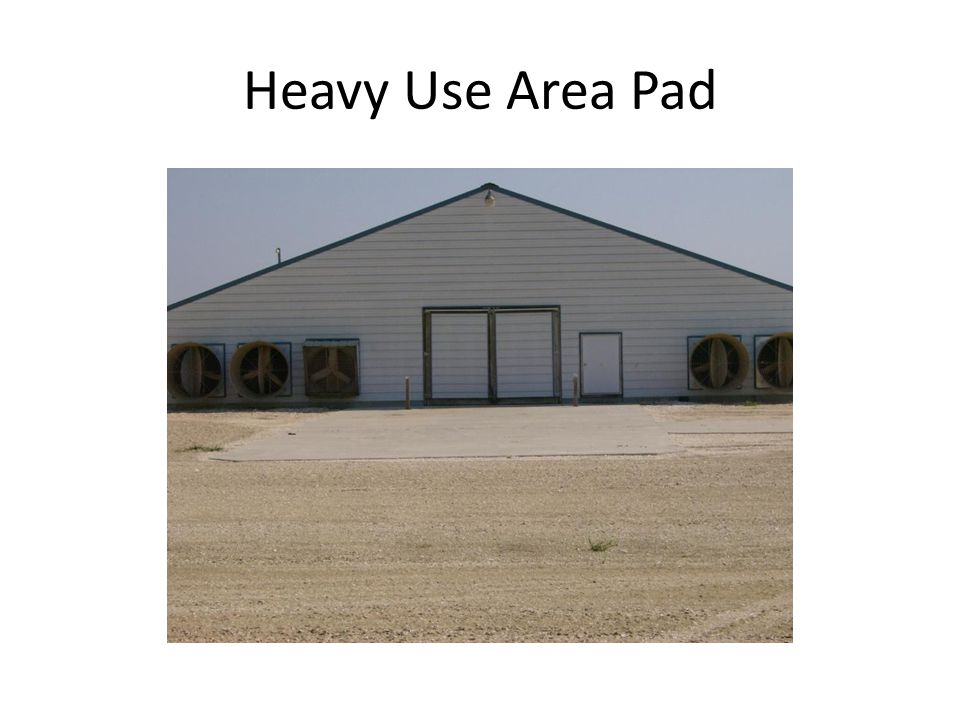 Heavy Use Area Pad