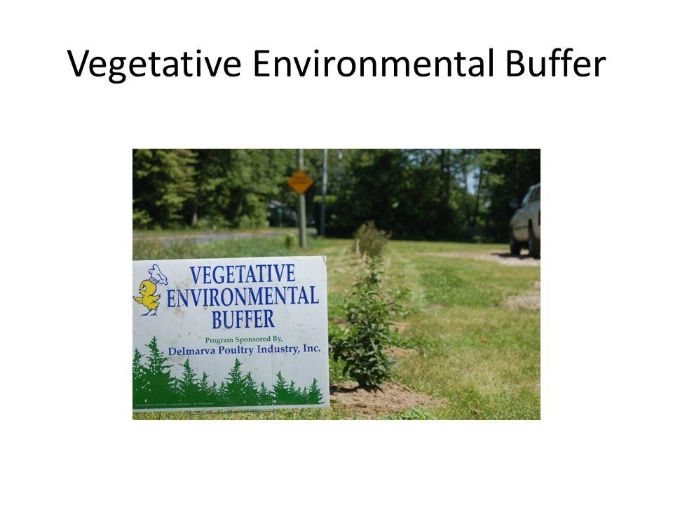 Vegetative Environmental Buffer