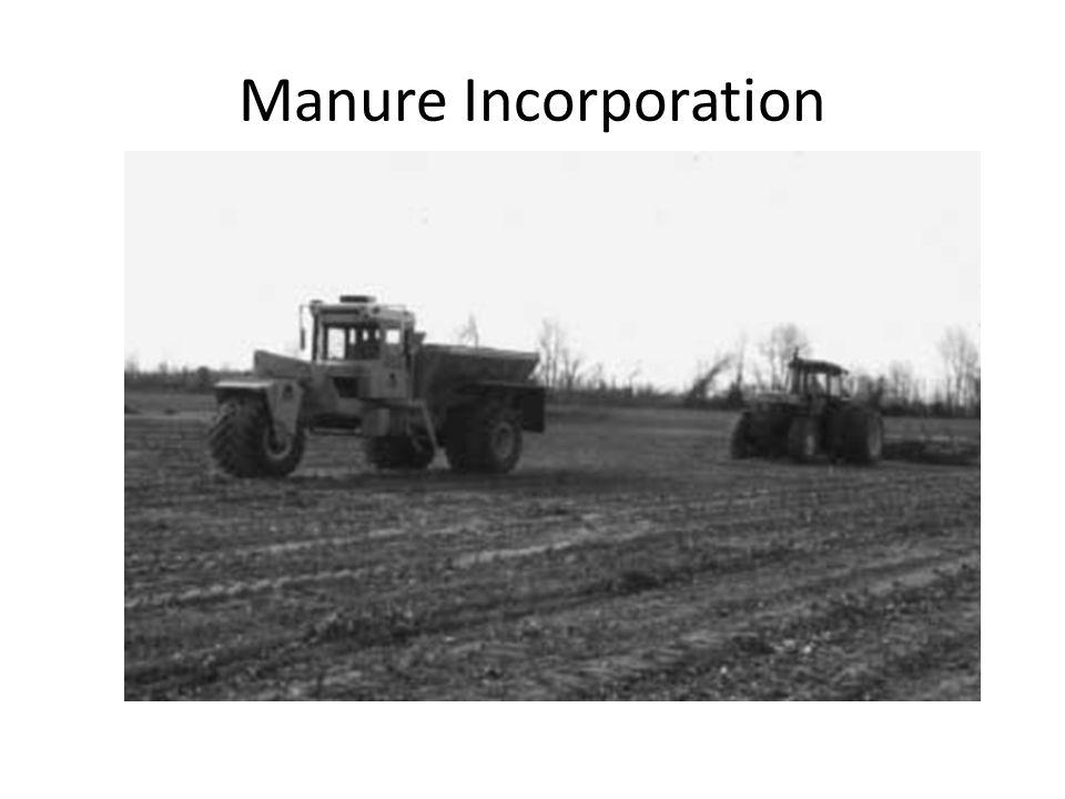 Manure Incorporation