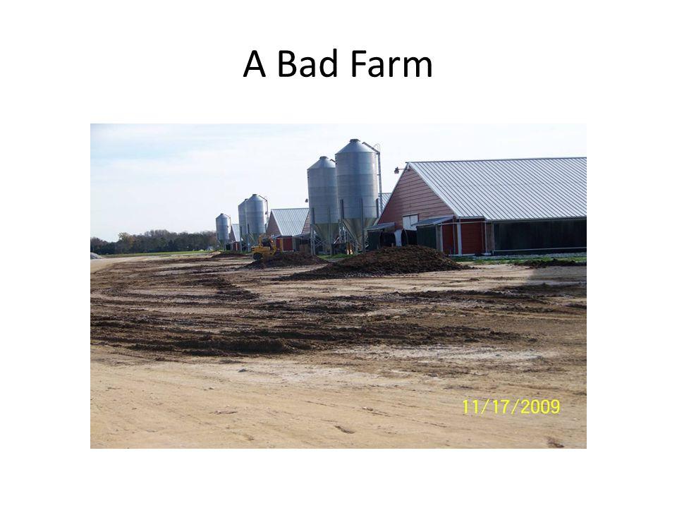 A Bad Farm