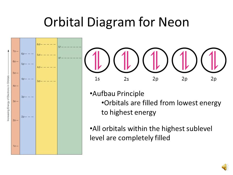 Orbital Diagram for Carbon 1s 2s 2p Hund's Rule Electrons will not pair up within orbitals until each orbital within a sublevel contains at least one electron Electrons distribute evenly