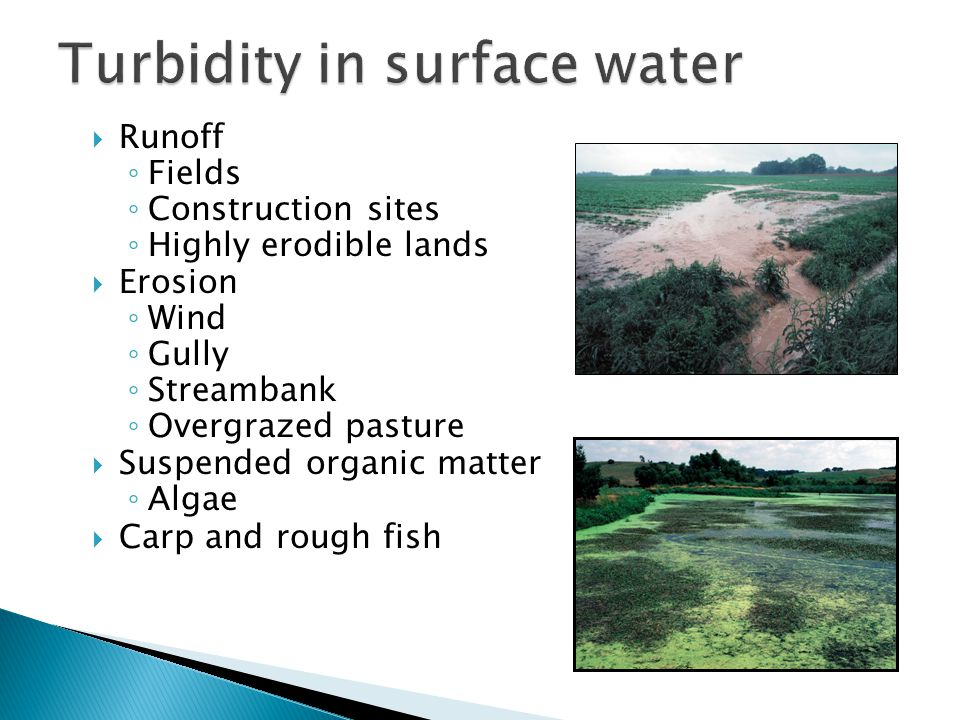  Runoff ◦ Fields ◦ Construction sites ◦ Highly erodible lands  Erosion ◦ Wind ◦ Gully ◦ Streambank ◦ Overgrazed pasture  Suspended organic matter ◦ Algae  Carp and rough fish