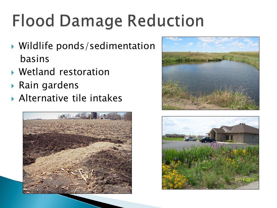  Wildlife ponds/sedimentation basins  Wetland restoration  Rain gardens  Alternative tile intakes