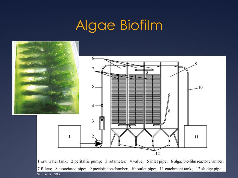 Algae Biofilm Qun et al., 2008