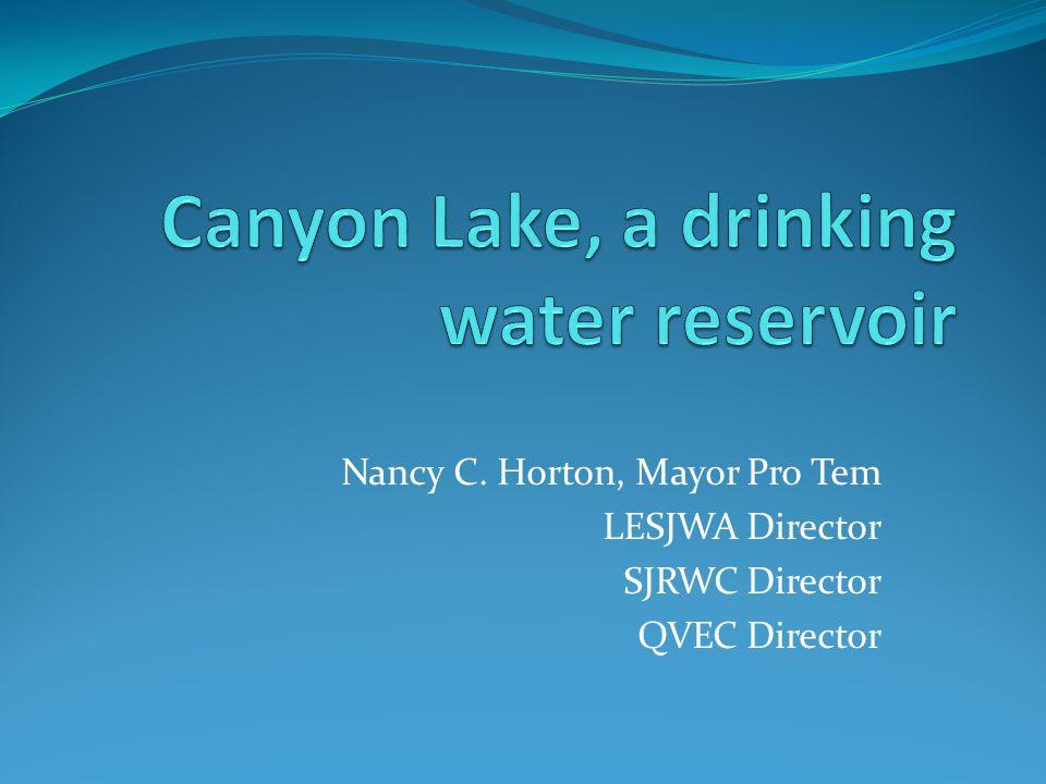 Canyon Lake Dam
