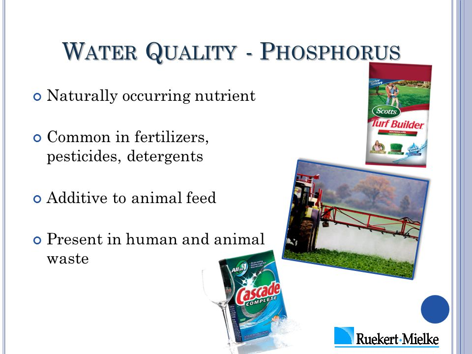 W ATER Q UALITY - P HOSPHORUS Naturally occurring nutrient Common in fertilizers, pesticides, detergents Additive to animal feed Present in human and