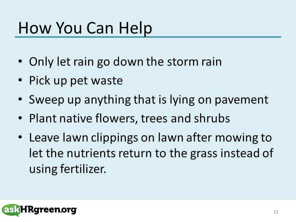 How You Can Help Only let rain go down the storm rain Pick up pet waste Sweep up anything that is lying on pavement Plant native flowers, trees and shrubs Leave lawn clippings on lawn after mowing to let the nutrients return to the grass instead of using fertilizer.