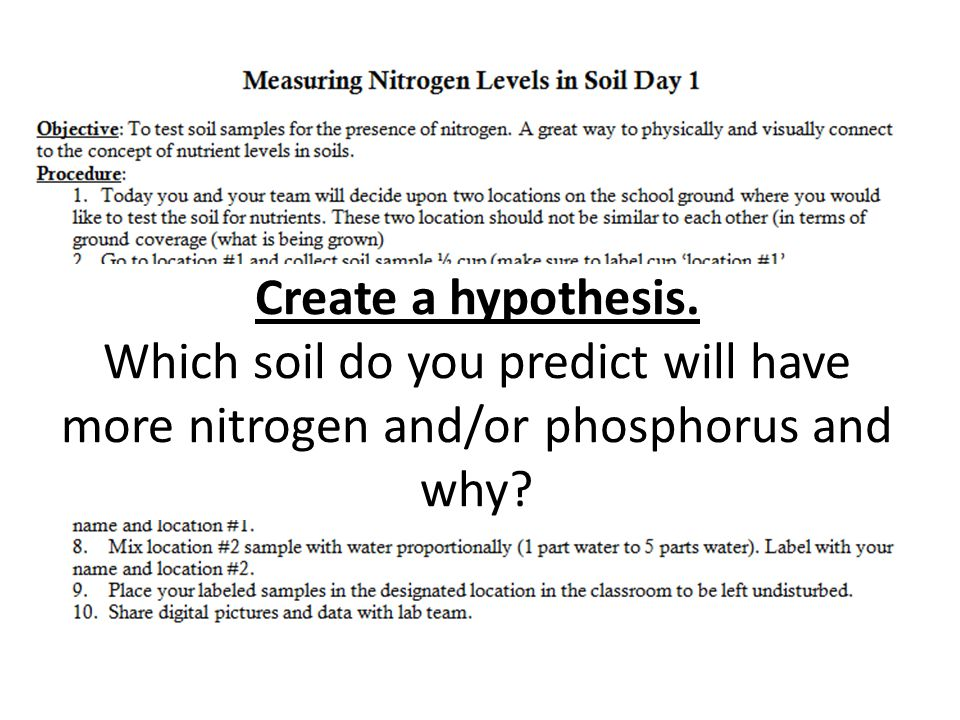Create a hypothesis. Which soil do you predict will have more nitrogen and/or phosphorus and why