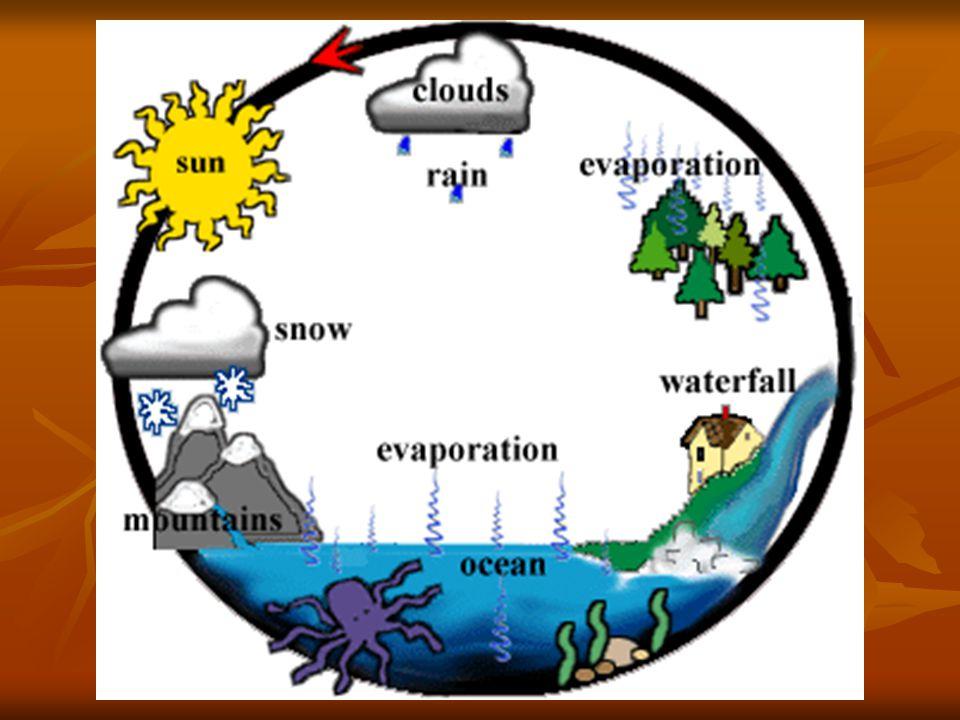 Forms of Precipitation
