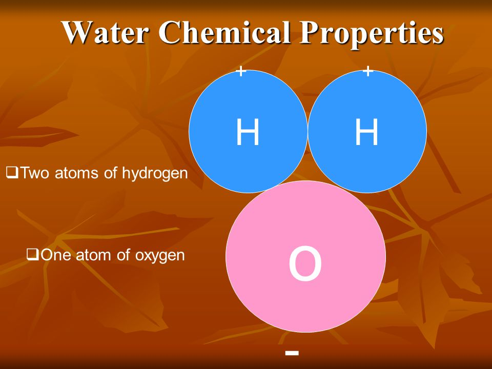 The WaterCycle Life depends on the recycling of chemicals. Chemicals pass back and forth between organic matter and the abiotic components. Life depen