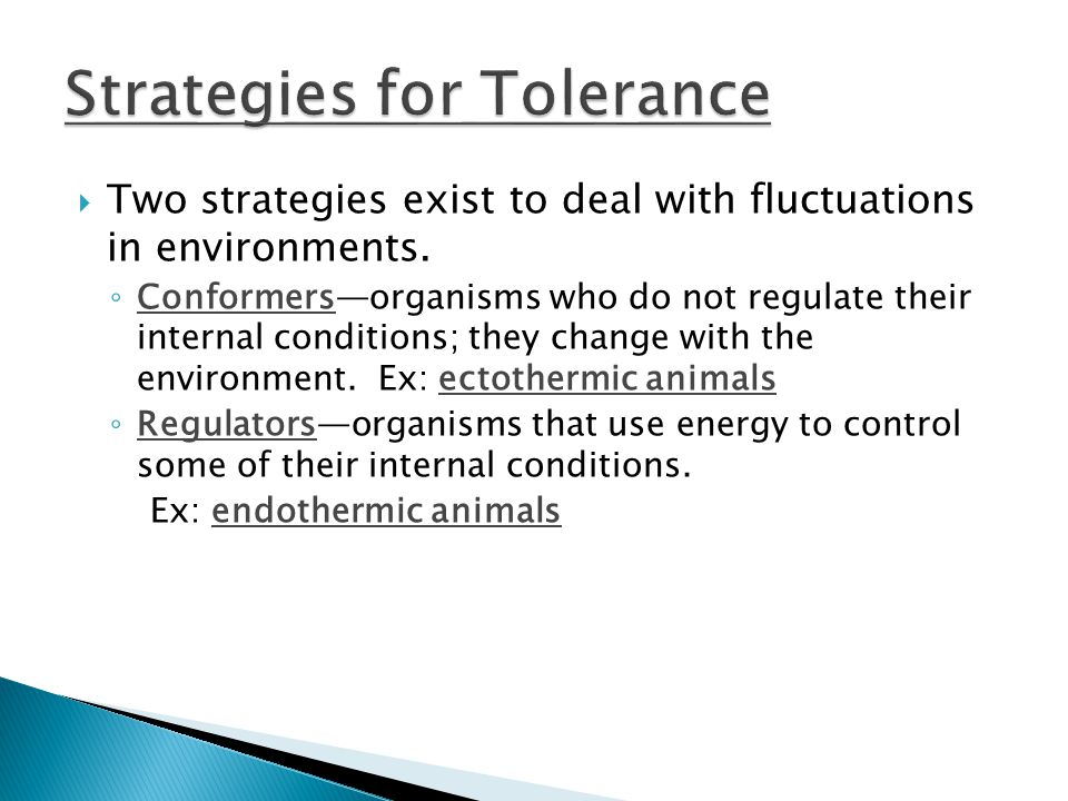  Two strategies exist to deal with fluctuations in environments.