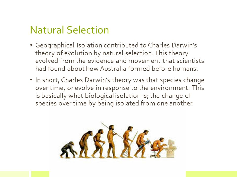 Natural Selection Geographical Isolation contributed to Charles Darwin's theory of evolution by natural selection.