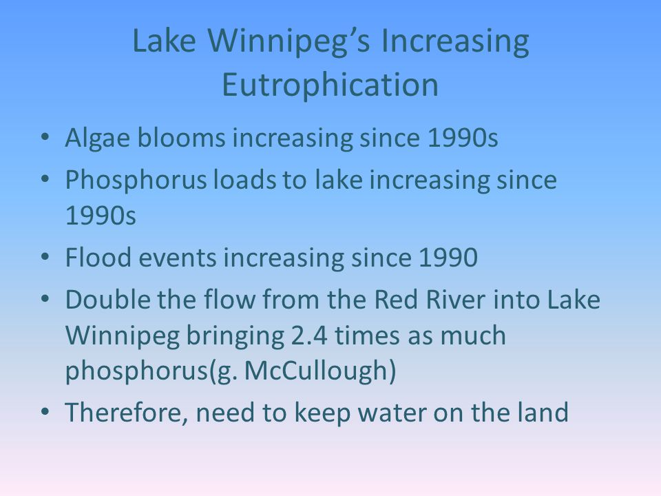 Lake Winnipeg's Increasing Eutrophication Algae blooms increasing since 1990s Phosphorus loads to lake increasing since 1990s Flood events increasing since 1990 Double the flow from the Red River into Lake Winnipeg bringing 2.4 times as much phosphorus(g.