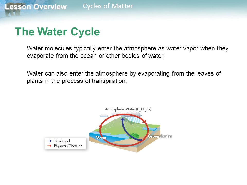Lesson Overview Lesson Overview Cycles of Matter The Water Cycle Water molecules typically enter the atmosphere as water vapor when they evaporate fro