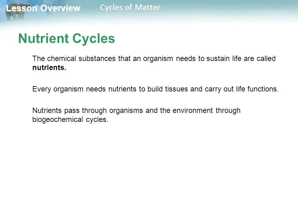 Lesson Overview Lesson Overview Cycles of Matter Nutrient Cycles The chemical substances that an organism needs to sustain life are called nutrients.