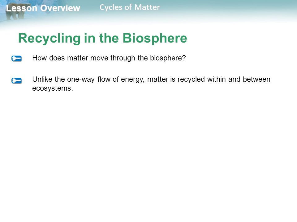 Lesson Overview Lesson Overview Cycles of Matter Recycling in the Biosphere Unlike the one-way flow of energy, matter is recycled within and between ecosystems.