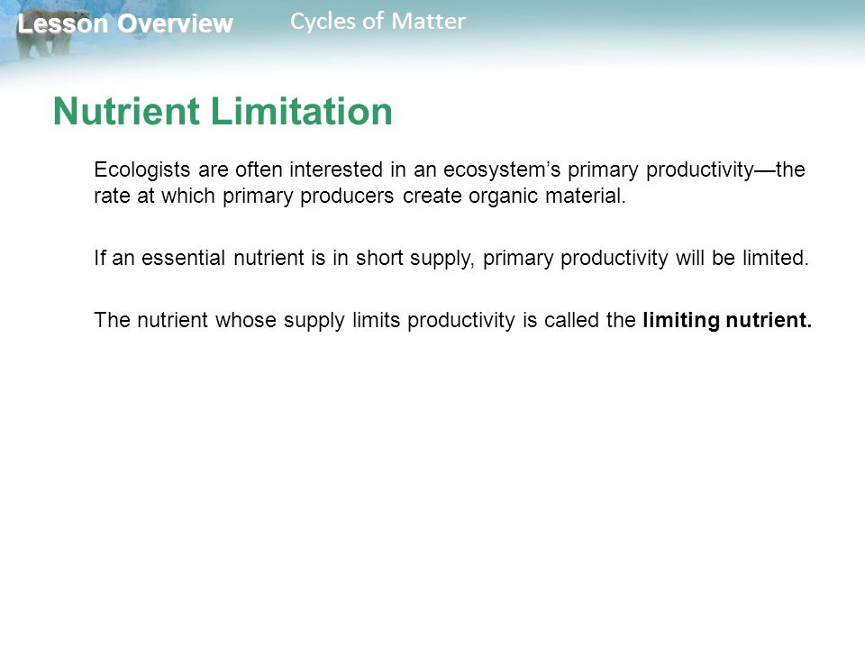 Lesson Overview Lesson Overview Cycles of Matter Nutrient Limitation Ecologists are often interested in an ecosystem's primary productivity—the rate a
