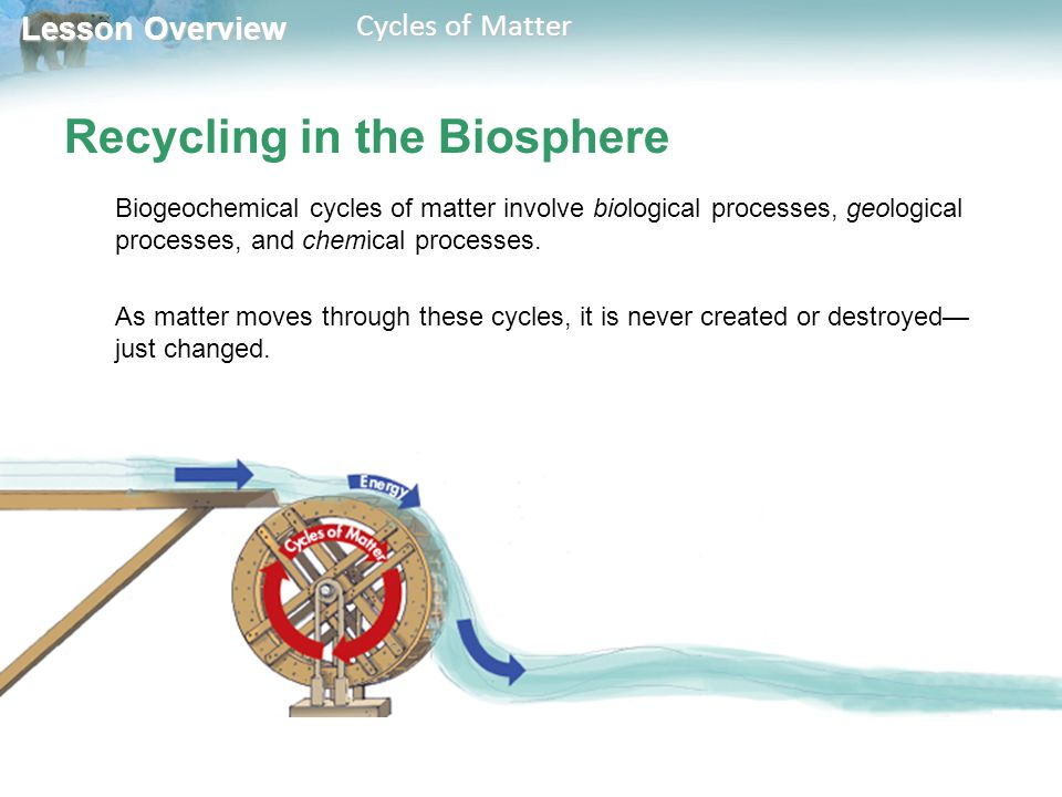 Lesson Overview Lesson Overview Cycles of Matter Nutrient Cycles What is the importance of the main nutrient cycles.