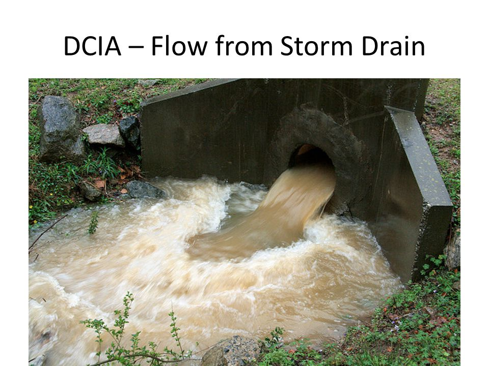 DCIA – Flow from Storm Drain