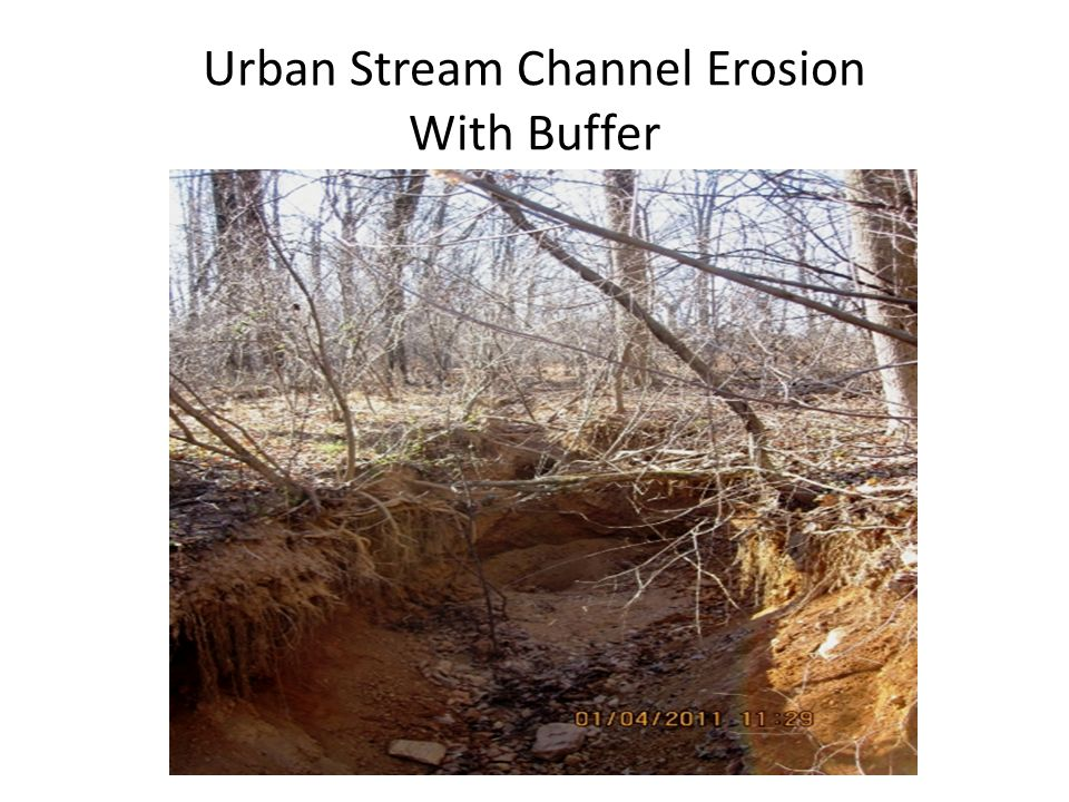 Urban Stream Channel Erosion With Buffer