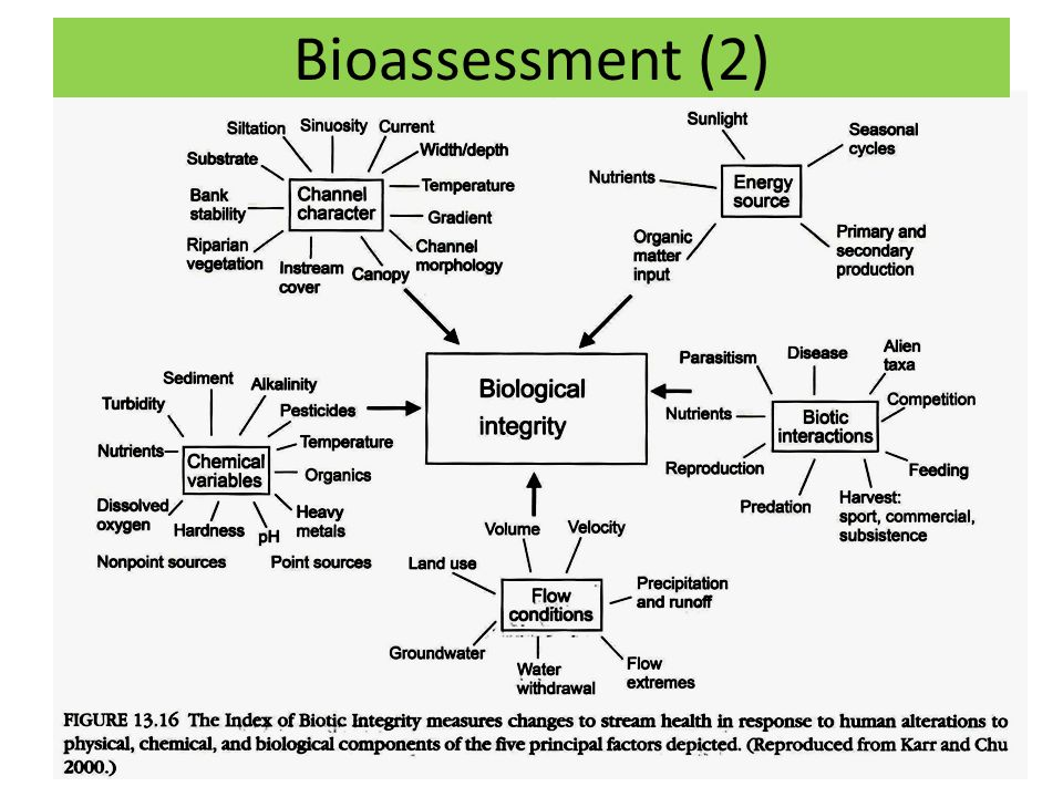 Bioassessment (2)