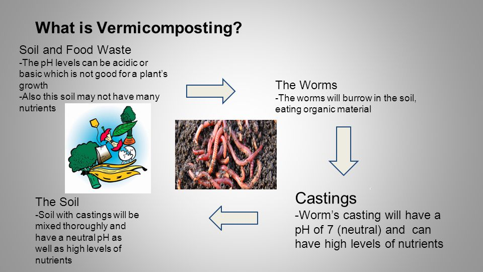 What is Vermicomposting.