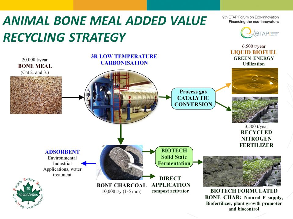ANIMAL BONE MEAL ADDED VALUE RECYCLING STRATEGY
