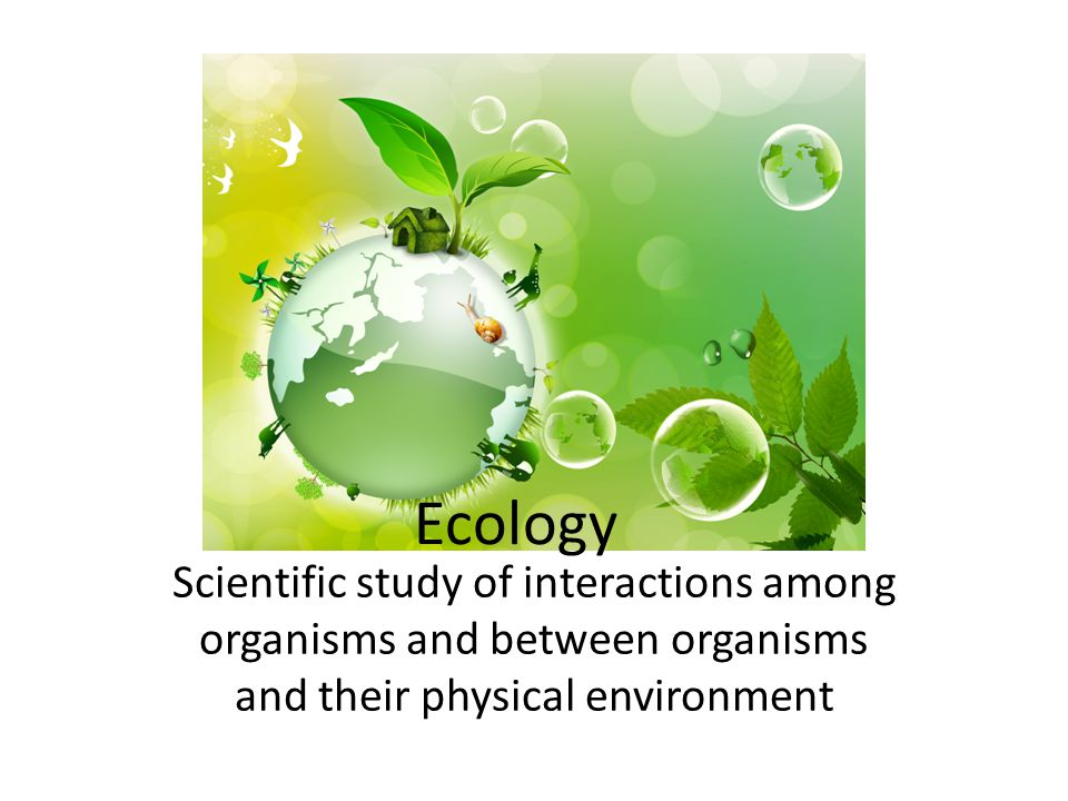 Biosphere: All life on earth and parts of earth in which life exists (land, water and atmosphere)