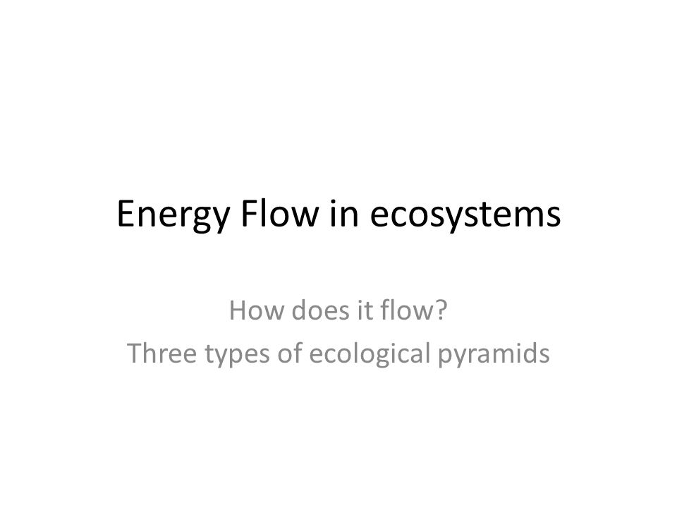 Energy Flow in ecosystems How does it flow? Three types of ecological pyramids