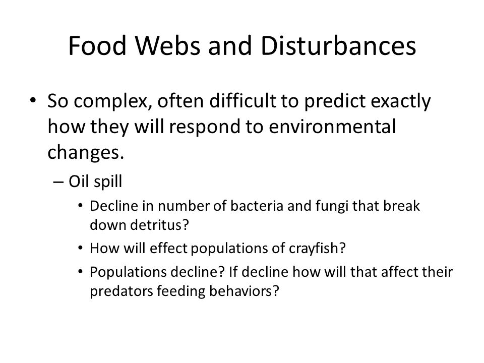 Food Webs and Disturbances So complex, often difficult to predict exactly how they will respond to environmental changes. – Oil spill Decline in numbe