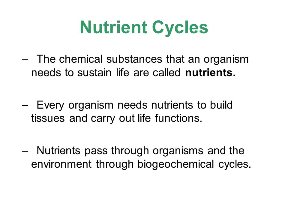 Nutrient Cycles –The chemical substances that an organism needs to sustain life are called nutrients. –Every organism needs nutrients to build tissues