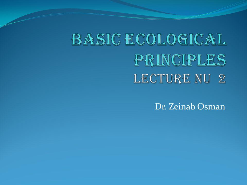 Dr. Zeinab Osman