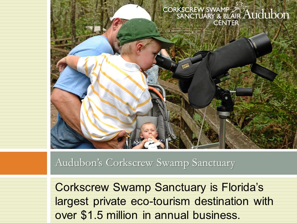 Corkscrew Swamp Sanctuary is Florida's largest private eco-tourism destination with over $1.5 million in annual business.