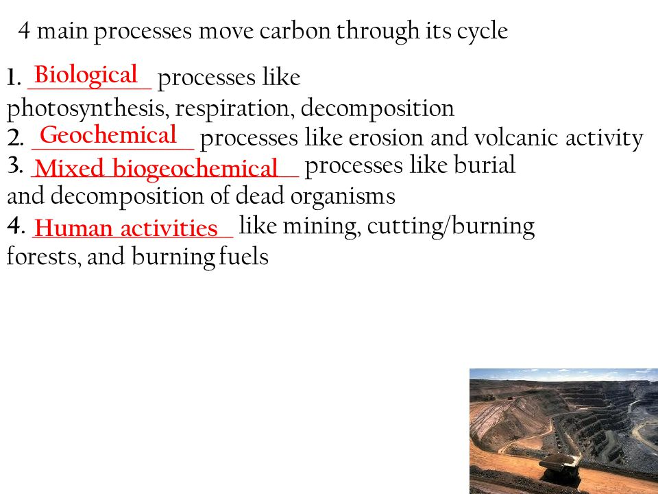 4. _____________________ like mining, cutting/burning forests, and burning fuels 4 main processes move carbon through its cycle 1. _____________ proce