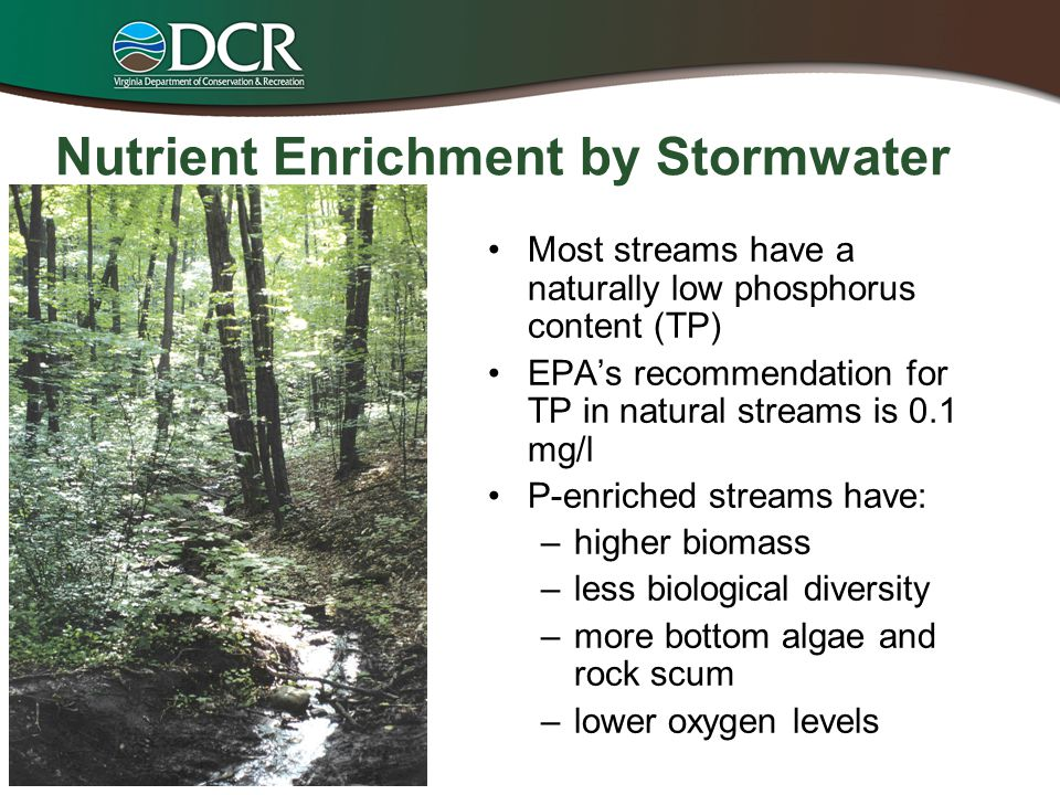 Nutrient Enrichment by Stormwater Most streams have a naturally low phosphorus content (TP) EPA's recommendation for TP in natural streams is 0.1 mg/l