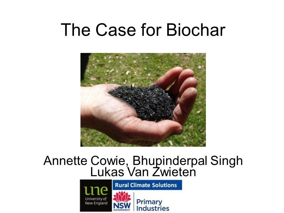 Annette Cowie, Bhupinderpal Singh Lukas Van Zwieten The Case for Biochar
