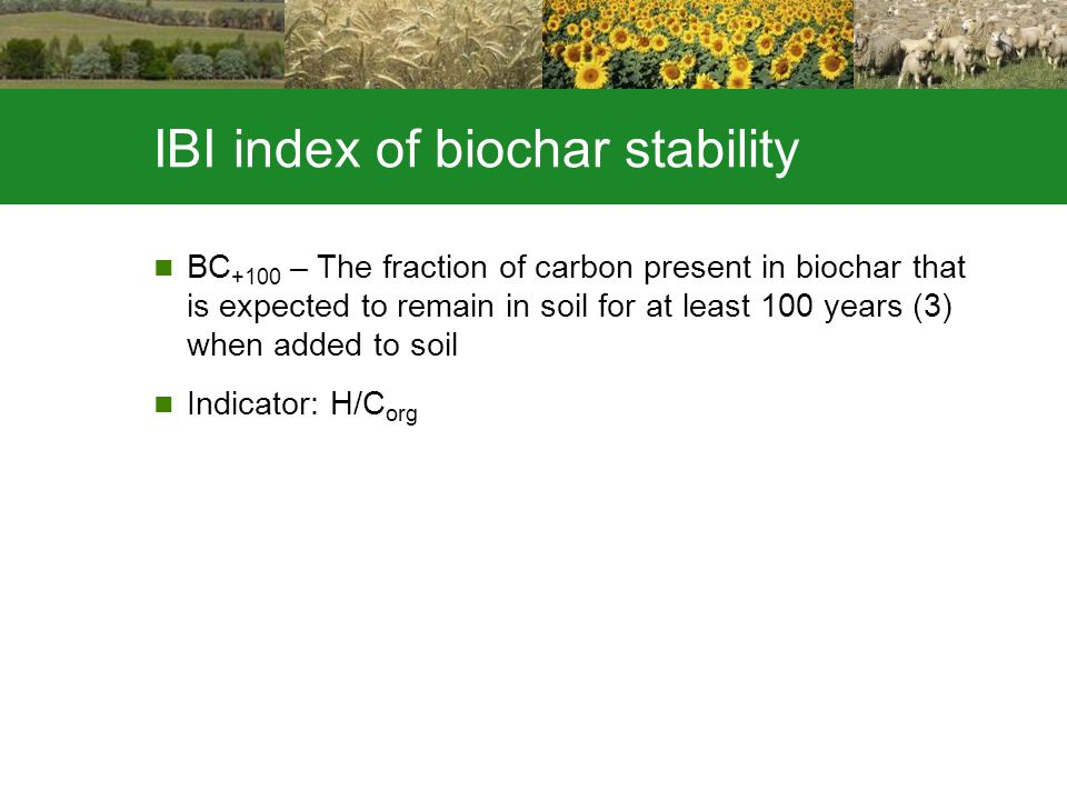 IBI index of biochar stability BC +100 – The fraction of carbon present in biochar that is expected to remain in soil for at least 100 years (3) when added to soil Indicator: H/C org
