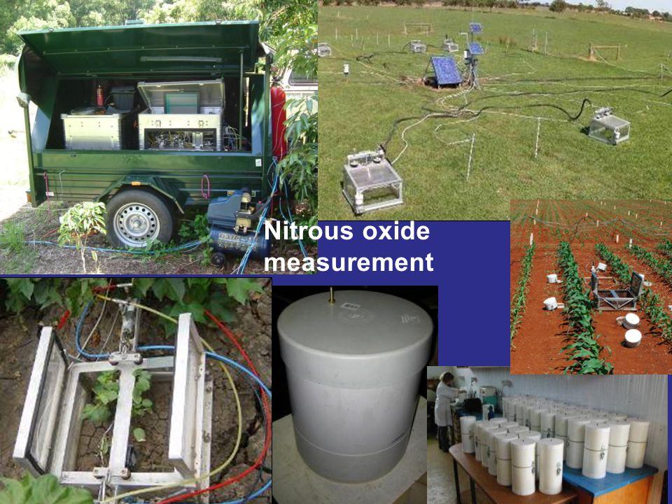Nitrous oxide measurement