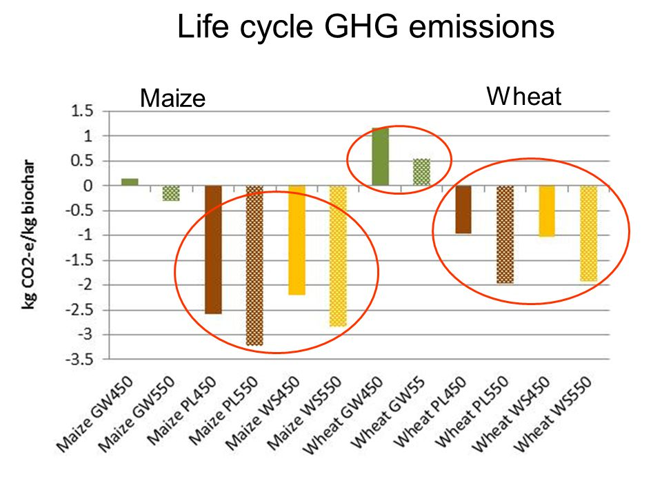 Life cycle GHG emissions Maize Wheat