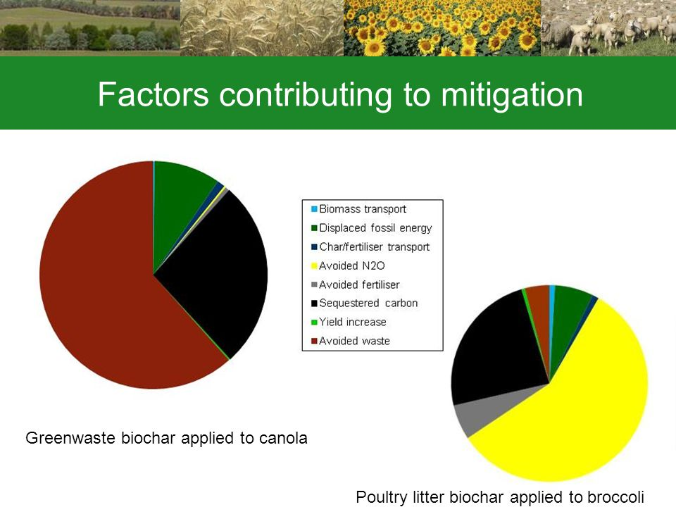 Factors contributing to mitigation Greenwaste biochar applied to canola Poultry litter biochar applied to broccoli
