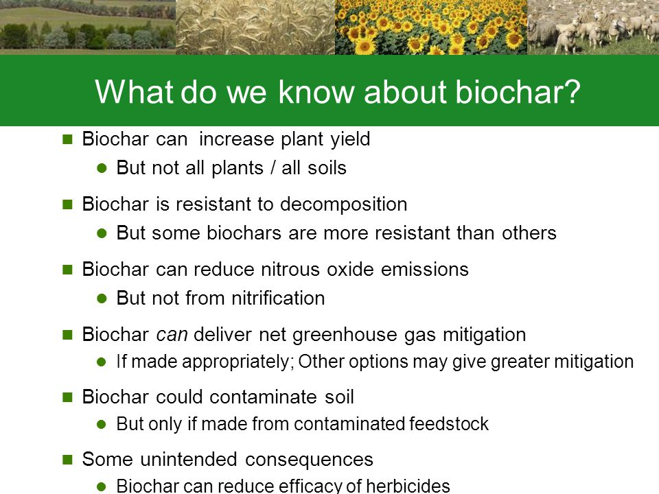 What do we know about biochar.