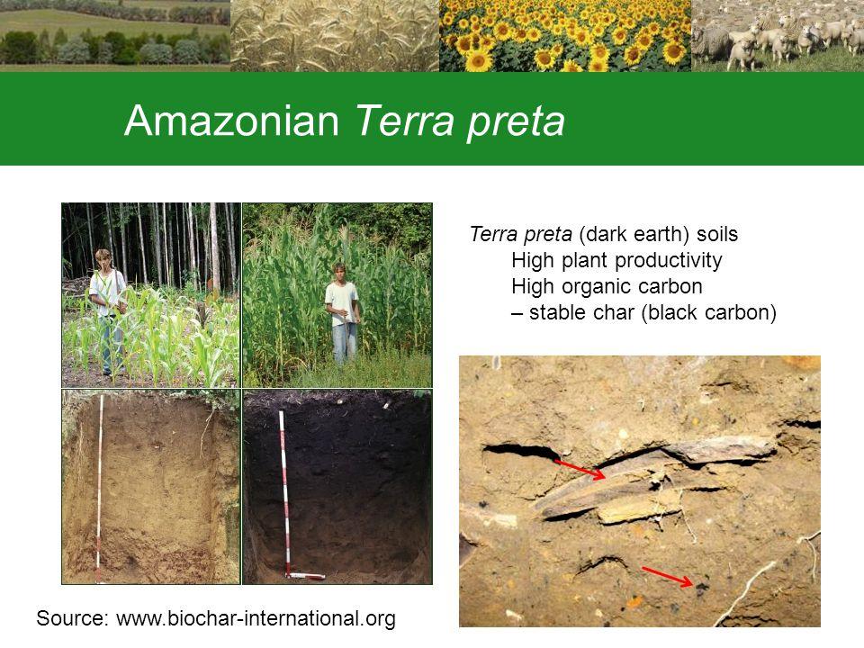 Amazonian Terra preta Source: www.biochar-international.org Terra preta (dark earth) soils High plant productivity High organic carbon – stable char (black carbon)