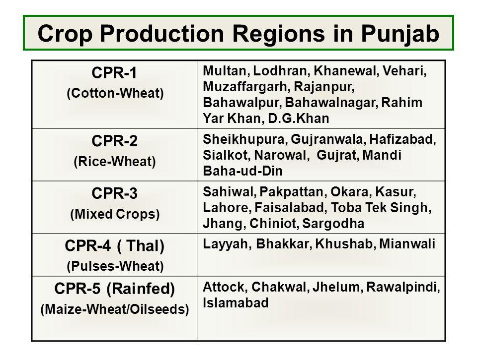Crop Production Regions in Punjab CPR-1 (Cotton-Wheat) Multan, Lodhran, Khanewal, Vehari, Muzaffargarh, Rajanpur, Bahawalpur, Bahawalnagar, Rahim Yar Khan, D.G.Khan CPR-2 (Rice-Wheat) Sheikhupura, Gujranwala, Hafizabad, Sialkot, Narowal, Gujrat, Mandi Baha-ud-Din CPR-3 (Mixed Crops) Sahiwal, Pakpattan, Okara, Kasur, Lahore, Faisalabad, Toba Tek Singh, Jhang, Chiniot, Sargodha CPR-4 ( Thal) (Pulses-Wheat) Layyah, Bhakkar, Khushab, Mianwali CPR-5 (Rainfed) (Maize-Wheat/Oilseeds) Attock, Chakwal, Jhelum, Rawalpindi, Islamabad