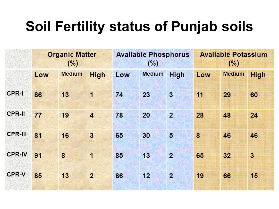 Soil Fertility status of Punjab soils Organic Matter (%) Available Phosphorus (%) Available Potassium (%) Low Medium HighLow Medium HighLow Medium High CPR-I 8613174233112960 CPR-II 7719478202284824 CPR-III 8116365305846 CPR-IV 91818513265323 CPR-V 8513286122196615