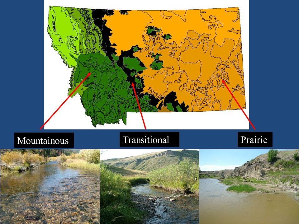 Mountainous Prairie Transitional
