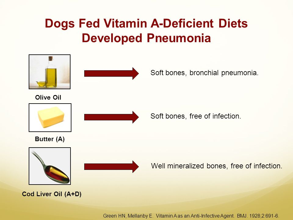 Dogs Fed Vitamin A-Deficient Diets Developed Pneumonia Butter (A) Olive Oil Cod Liver Oil (A+D) Soft bones, bronchial pneumonia. Soft bones, free of i